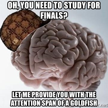 Scumbag Brain - Oh, you need to study for finals? Let me provide you with the attention span of a goldfish