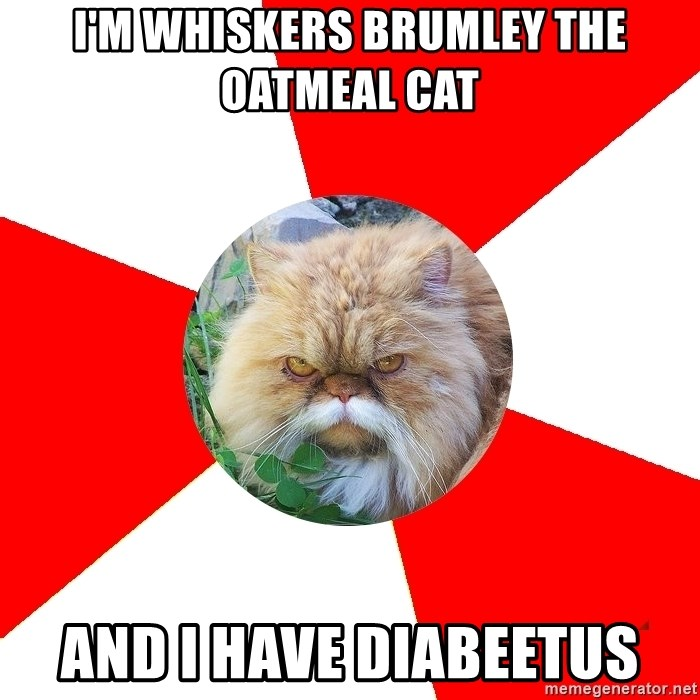 Diabetic Cat - i'm whiskers brumley the oatmeal cat and i have diabeetus