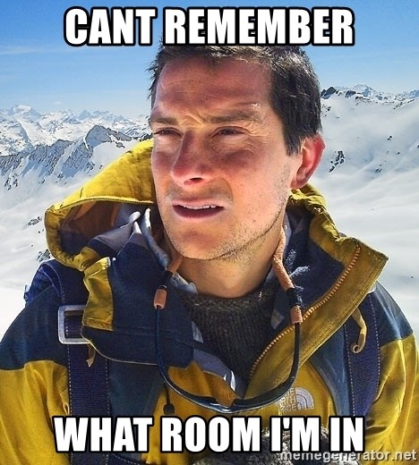 Bear Grylls Loneliness - cant remember what room i'm in