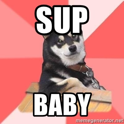Cool Dog - sup baby