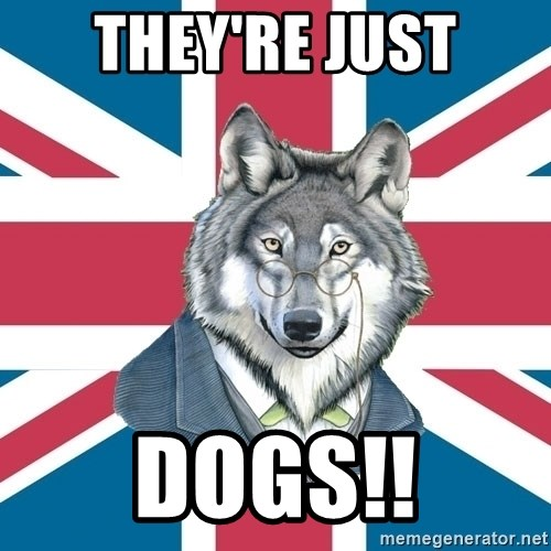Sir Courage Wolf Esquire - THEY'RE JUST DOGS!!