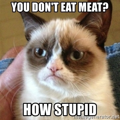 Grumpy Cat  - You don't eat meat? How Stupid