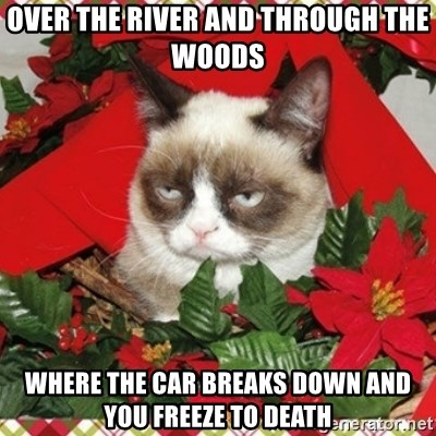 Grumpy Christmas Cat - over the river and through the woods where the car breaks down and you freeze to death