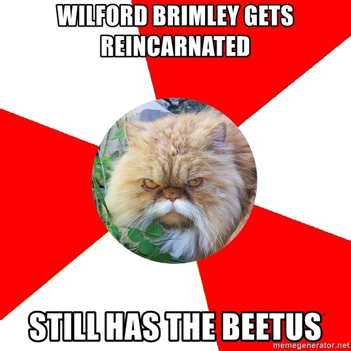 Diabetic Cat - wilford brimley gets reincarnated still has the beetus