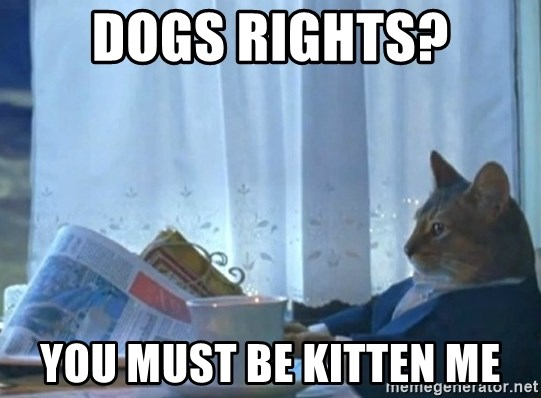 Sophisticated Cat - dogs rights? you must be kitten me