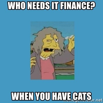 crazy cat lady simpsons - Who needs IT Finance? when you have cats