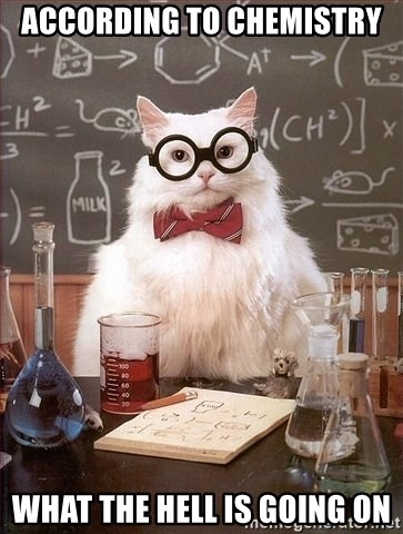 Chemistry Cat - ACCORDING TO CHEMISTRY  WHAT THE HELL IS GOING ON