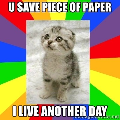 Cute Kitten - U SAVE PIECE OF PAPER I LIVE ANOTHER DAY