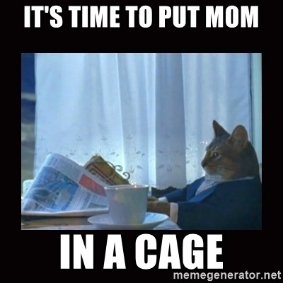 i should buy a boat cat - it's time to put mom in a cage