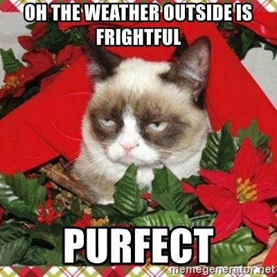 Grumpy Christmas Cat - OH THE WEATHER OUTSIDE IS FRIGHTFUL PURFECT