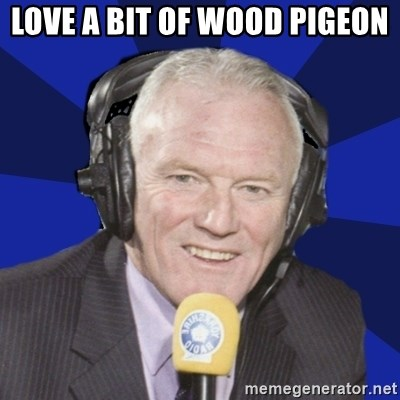 Optimistic Eddie Gray  - LOVE A BIT OF WOOD PIGEON