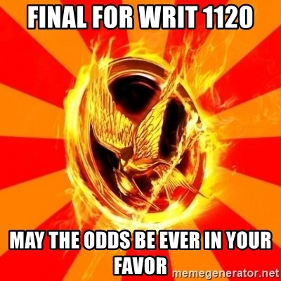 Typical fan of the hunger games - Final for WRIT 1120 MAy the odds be ever in your favor