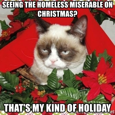 Grumpy Christmas Cat - Seeing the homeless miserable on christmas? that's my kind of holiday