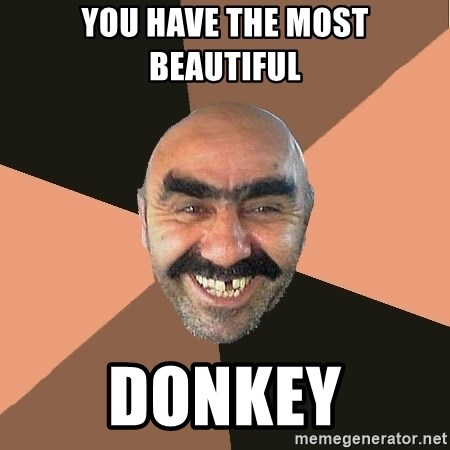 Provincial Man - You have the Most Beautiful Donkey
