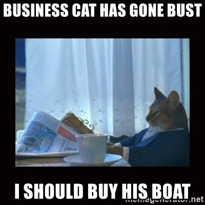 i should buy a boat cat - business cat has gone bust I should buy his boat