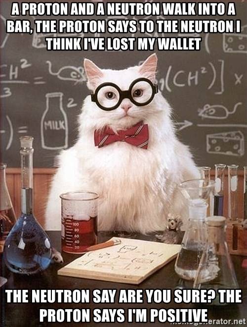 Science Cat - A proton and a neutron walk into a bar, the proton says to the neutron i think i've lost my wallet  The neutron say are you sure? The proton says i'm positive