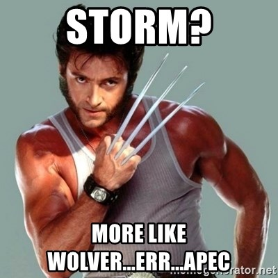 Wolverine - STORM? MORE LIKE WOLVER...ERR...APEC