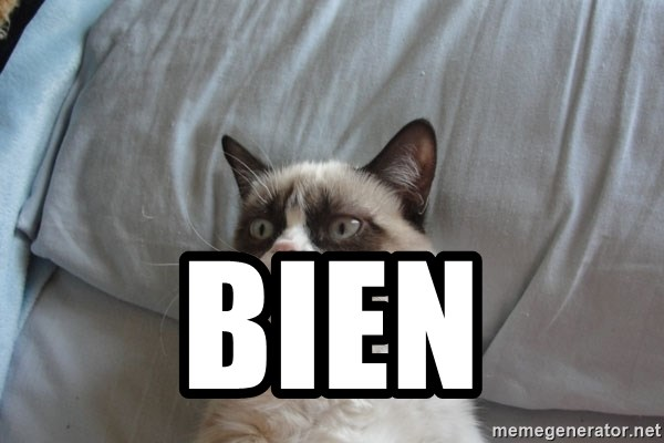 Grumpy cat good - bien