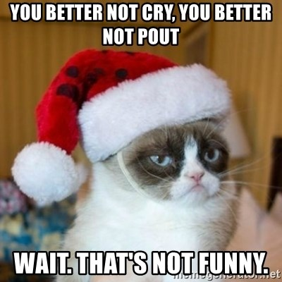 Grumpy Cat Santa Hat - YOu better not cry, you better not pouT Wait. That's not funny.