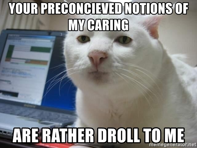 Serious Cat - your preconcieved notions of my caring are rather droll to me