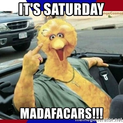 Big Bird Middle Finger - It's Saturday  Madafacars!!!