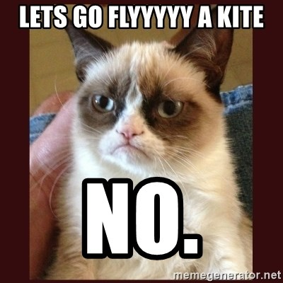 Image result for grumpy cat fly a kite meme