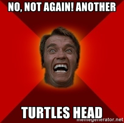 Angry Arnold - no, not again! another turtles head