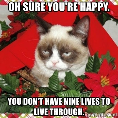 Grumpy Christmas Cat - OH SURE YOU'RE HAPPY. YOU DON'T HAVE NINE LIVES TO LIVE THROUGH.