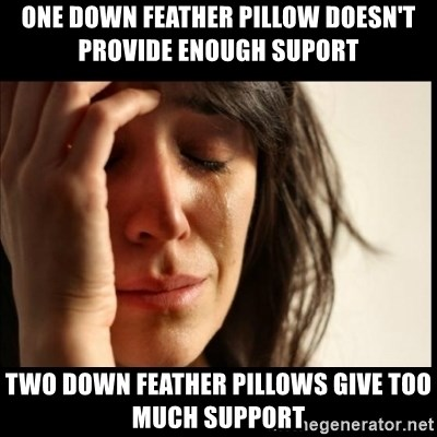 First World Problems - One down feather pillow doesn't provide enough suport two down feather pillows give too much support