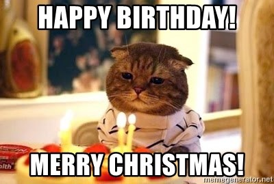 Birthday Cat - Happy birthday! MErry Christmas!