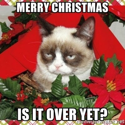 Grumpy Christmas Cat - Merry Christmas Is it over yet?