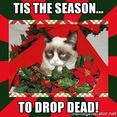 GRUMPY CAT ON CHRISTMAS - Tis the season... To drop dead!