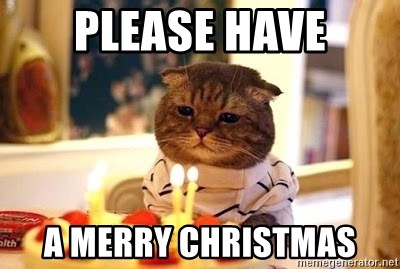 Birthday Cat - Please have a merry christmas