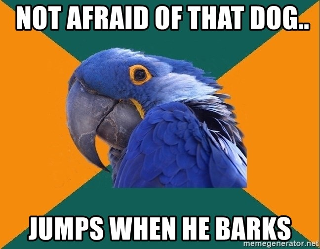 Paranoid Parrot -  not afraid of that dog.. jumps when he barks