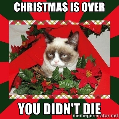 GRUMPY CAT ON CHRISTMAS - christmas is over you didn't die