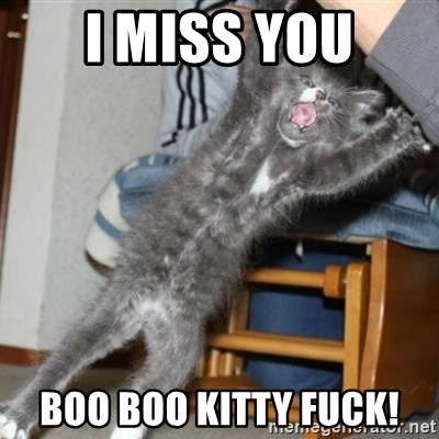 I Miss You Boo Boo Kitty Fuck I Miss You Cat
