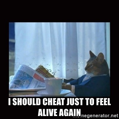 i should buy a boat cat - i should cheat just to feel alive again