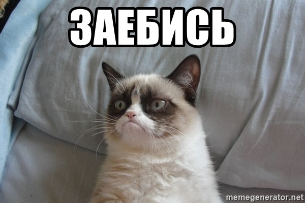 Grumpy cat good - заебись