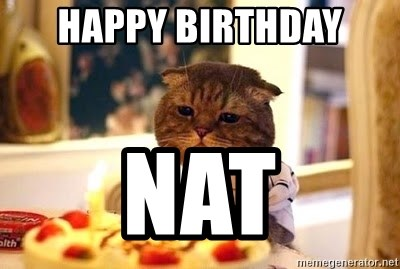 Birthday Cat - HAPPY BIRTHDAY  NAT