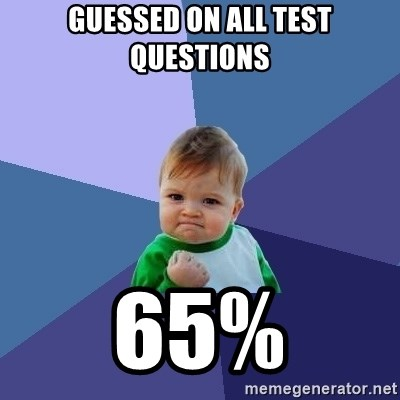 Success Kid - guessed on all test questions 65%