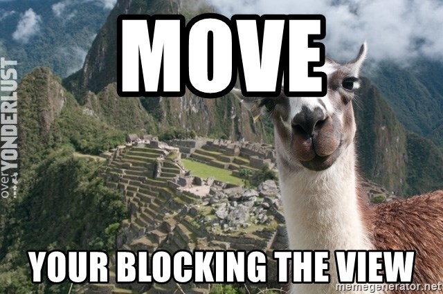 Bossy the Llama - MOVE YOUR BLOCKING THE VIEW