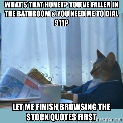 rich cat  - what's that honey? you've fallen in the bathroom & you need me to dial 911?  let me finish browsing the stock quotes first