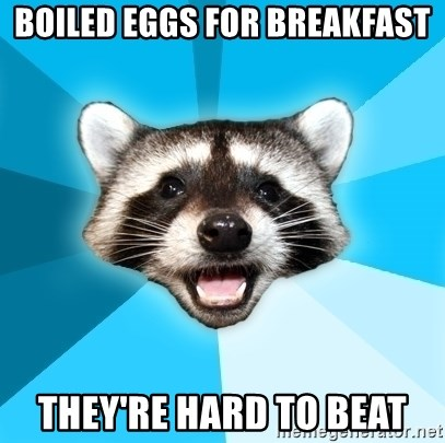 Lame Pun Coon - boiled eggs for breakfast they're hard to beat
