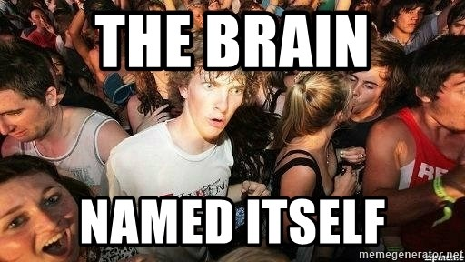 -Sudden Clarity Clarence - The brain named itself