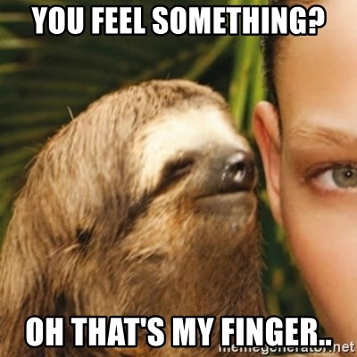 Whispering sloth - You feel something? Oh that's my finger..
