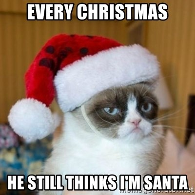 Grumpy Cat Santa Hat - EVERY CHRISTMAS HE STILL THINKS I'M SANTA
