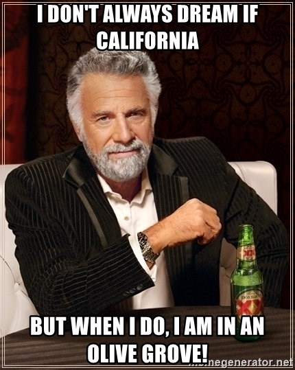 Dos Equis Guy gives advice - I don't alwAys dream if California But when I do, I am in an olive grove!