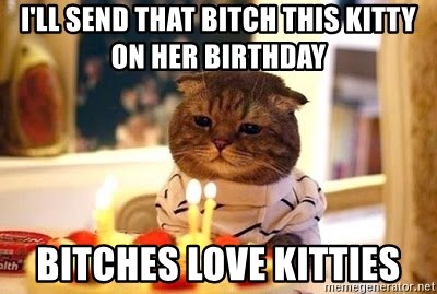 Birthday Cat - I'll send that bitch this kitty on her birthday bitches love kitties