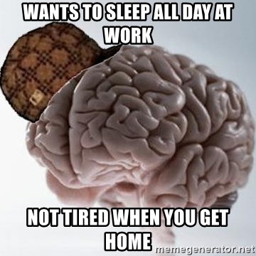 Scumbag Brain - wants to sleep all day at work not tired when you get home