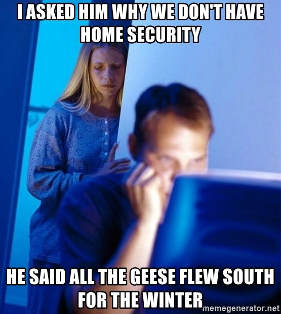 Redditors Wife - I asked him why we don't have home security he said all the geese flew south for the winter